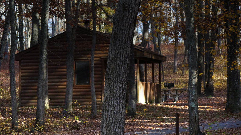 cabin autumn